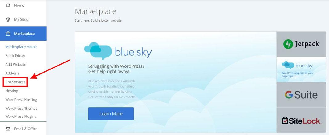 bluehost pro services