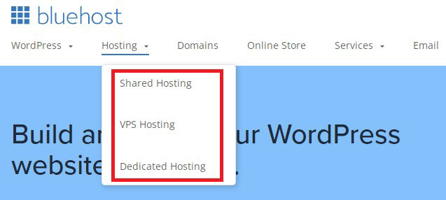 bluehost hosting types links